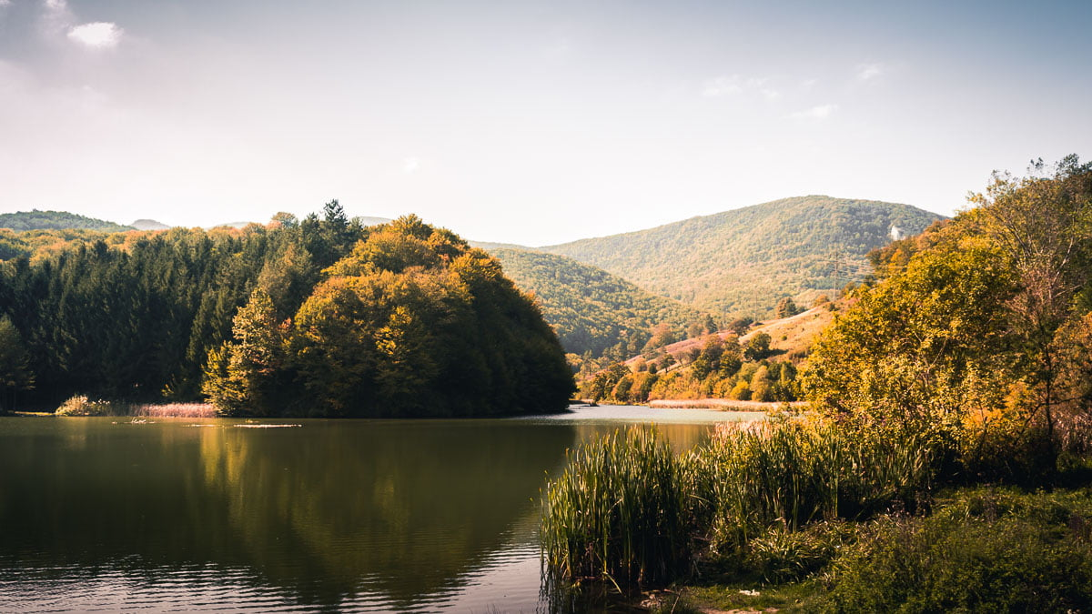 The lake surrounded by forested mountains.