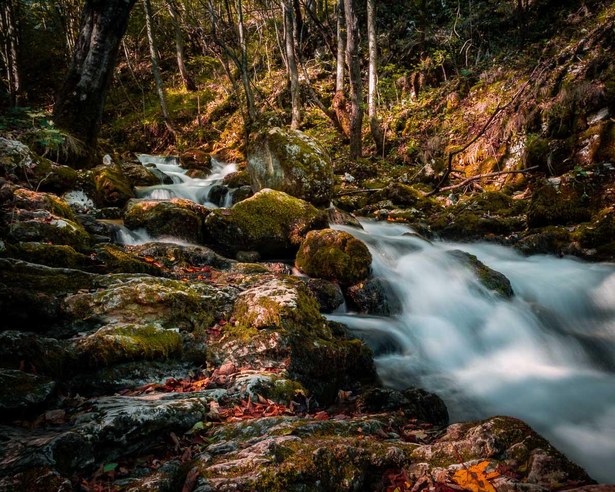 Rapid stream flowing towards the Bigăr waterfall.