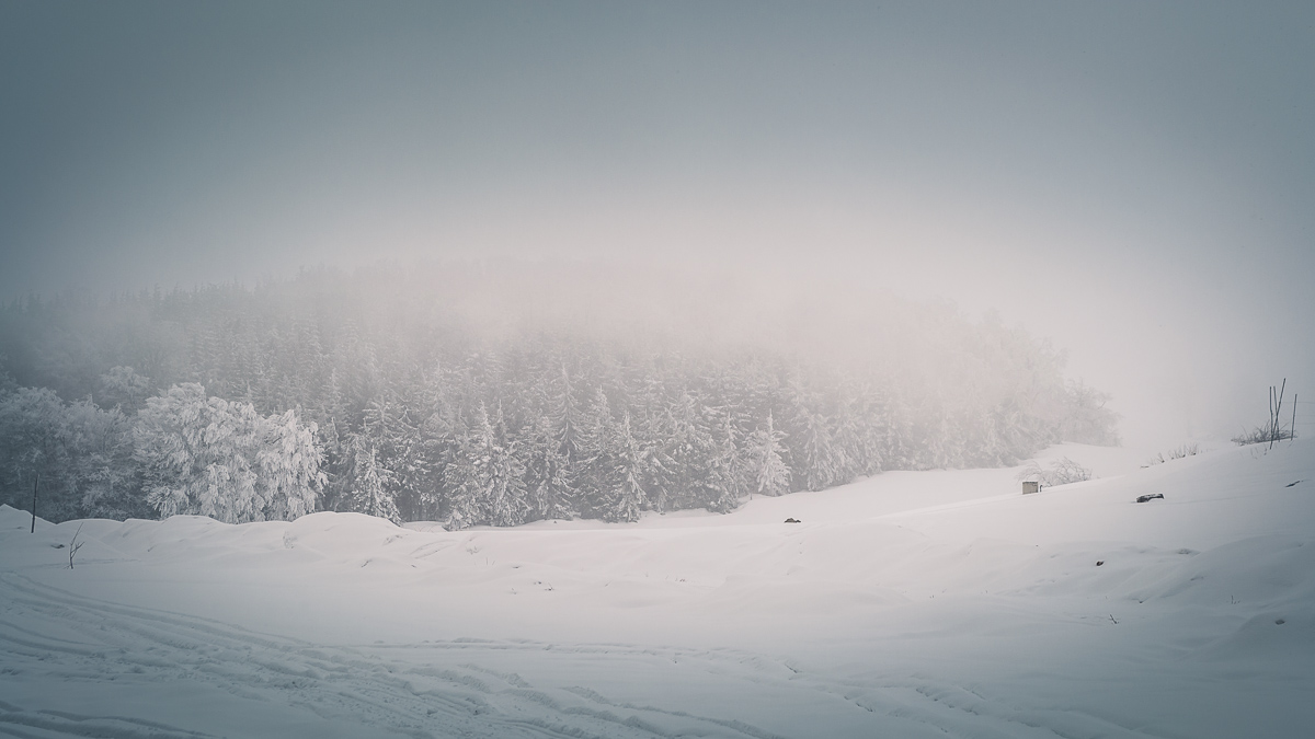 Dense fog in the mountains in winter