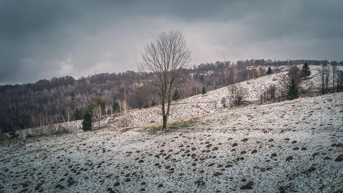 Fresh snow between the Semenic mountains.